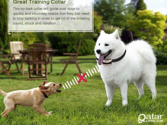 anti bark collar for dogs - مانع النباح