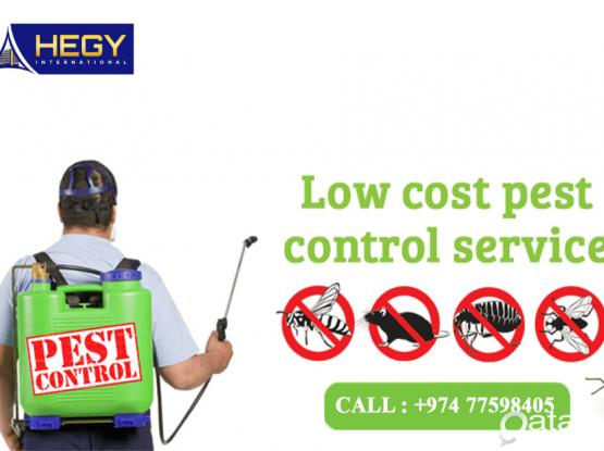 Pest Control Services - Cleaning Services - Disinfection Service Call Today 77598405