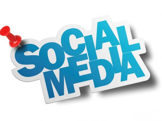 Website Designing and Social media promotion low cost