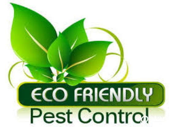 100% guarantee - Pest Control Services - Call 50088702