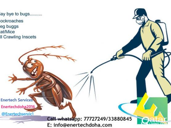 Pest Control Services - Satisfaction Guaranteed(Call/Whatsapp: 77727249)
