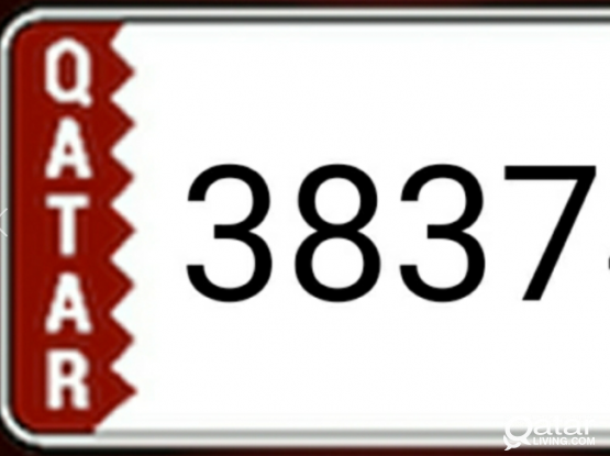 Car plate Number 38374